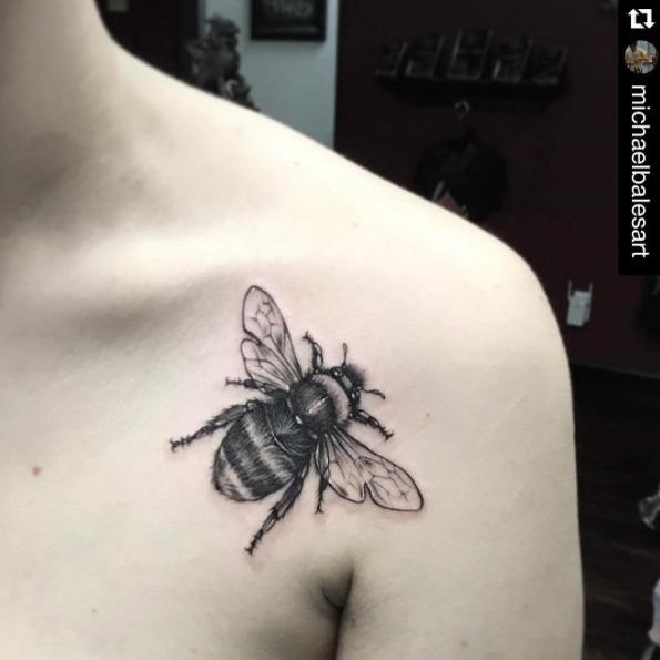 este_impressionante_pedaço_do_ombro