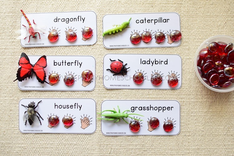 Insect Name Syllables Counting