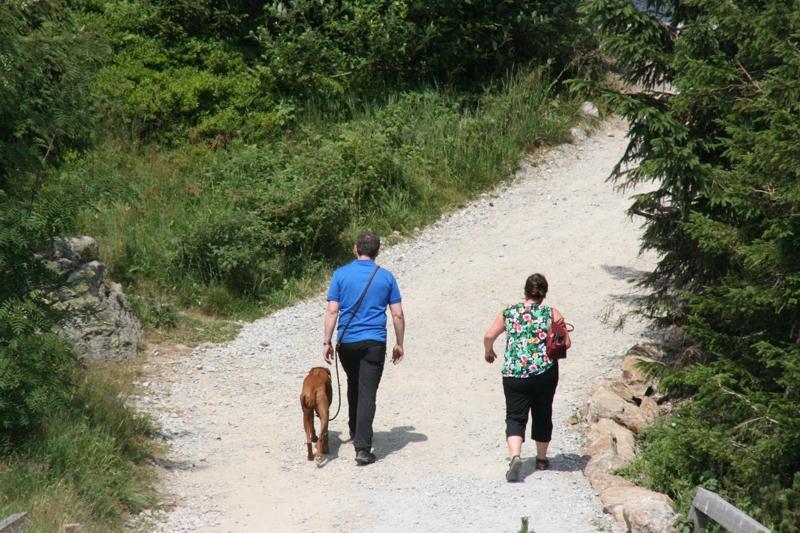 Ausflugsfahrt in den Bayerischen Wald: 19. Juli 2015 - IMG_1816.JPG