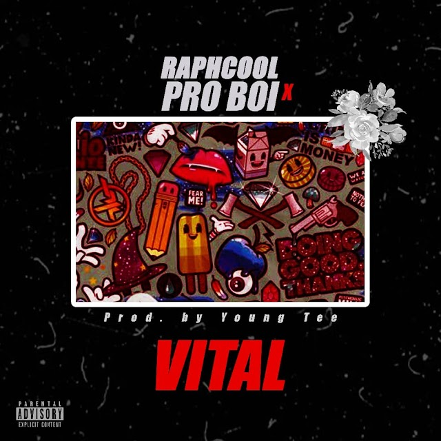 MUSIC : Raphcool ft Pro boi vital [ Prod by Young tee ]