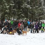 01. Januar 2016: Neujahrswanderung ins Waldnaabtal - IMG_1495.JPG