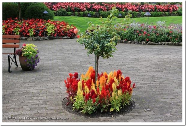 160906_Butchart_Gardens_0157