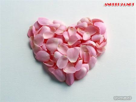 Tuyển chọn hình nền tình yêu đẹp lãng mạn ngọt ngào cho những trái tim đang yêu thổn thức