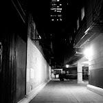 exploring chicago-26.jpg