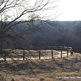 01-05-13 Arbor Hills Nature Preserve - IMGP3938.JPG