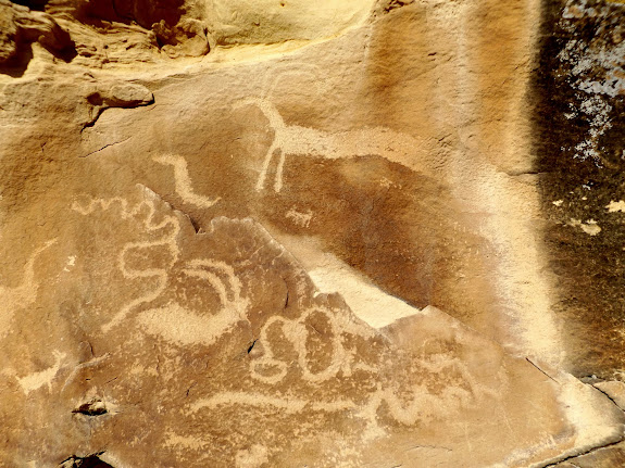 Long sheep/snake and other petroglyphs