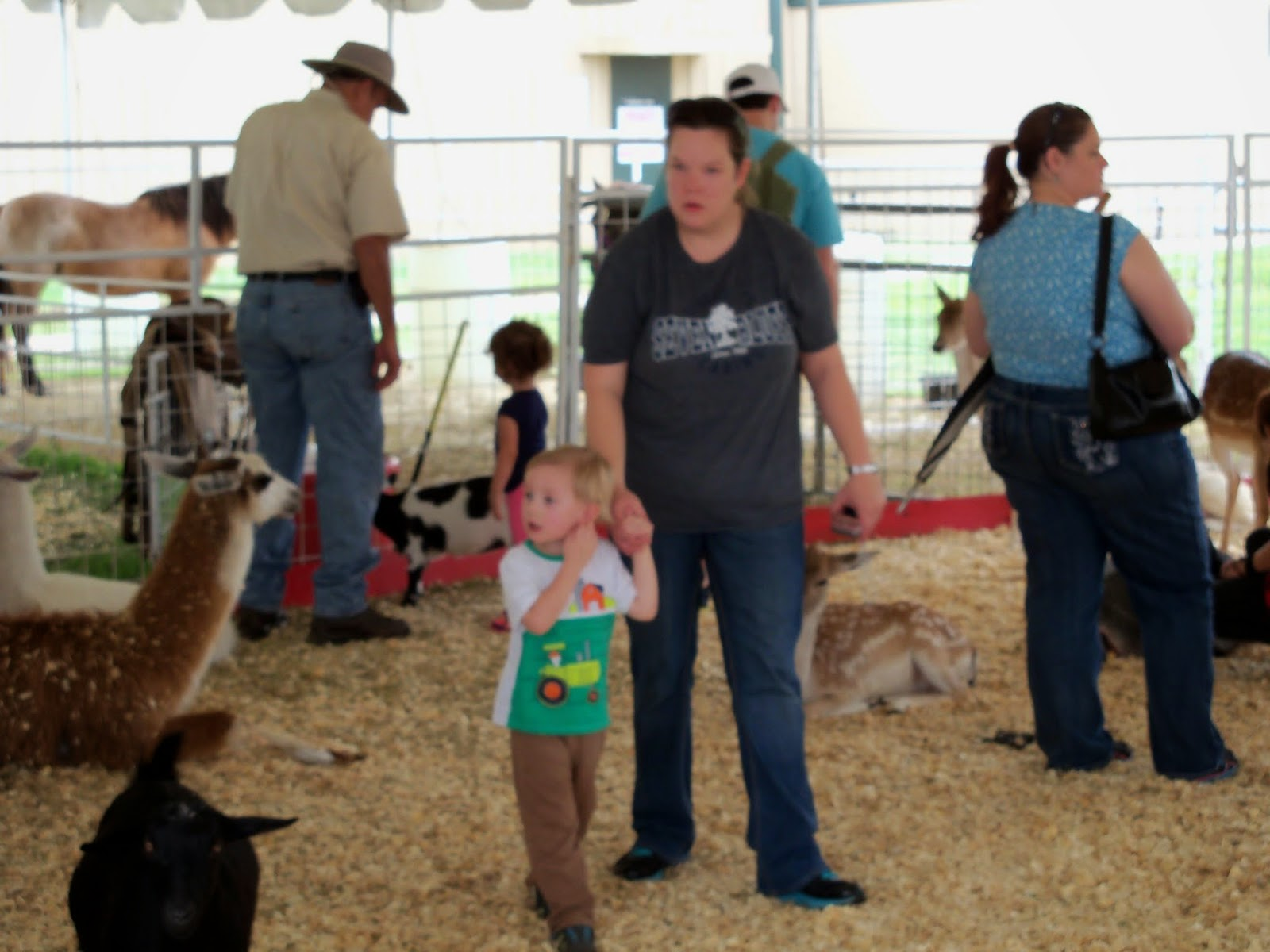 Fort Bend County Fair 2014 - 116_4320.JPG