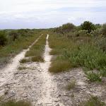 Sandy service trail Mowlee Ridge (34874)