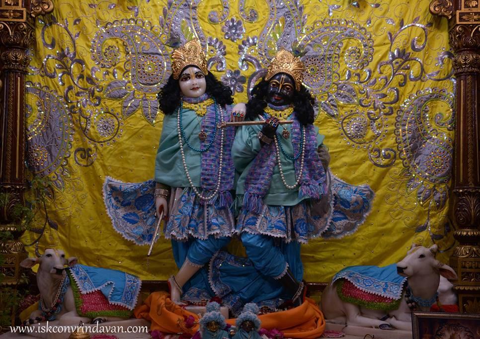 ISKCON Vrindavan Mangla Deity Darshan 28 Jan 2016 (4)
