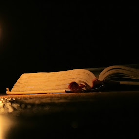 Reading Light by Ad Blessings - Artistic Objects Still Life ( pwcstilllife )