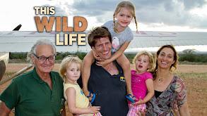 This Wild Life thumbnail