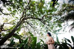 Foto 0487. Marcadores: 27/11/2010, Casamento Valeria e Leonardo, Rio de Janeiro