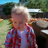 Pumpkin Patch - 115_8223.JPG