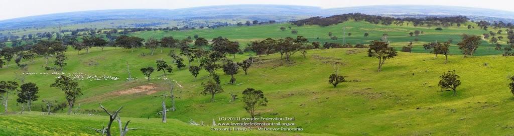 Postcards filming 31 - Mt Beevor Panorama