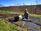 Planting onions April 11.