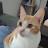 Owen Douglas avatar image