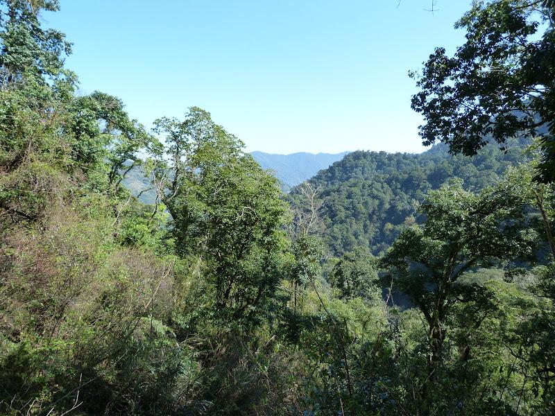 TAIWAN. Dans une region ou habitent les aborigenes de l ethnie Atayal - P1110762.JPG