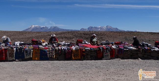 Vicuñas Volcanes Arequipa Chivay Perú 28