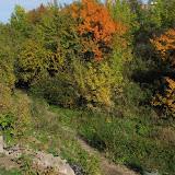 Ступеньки в Осень