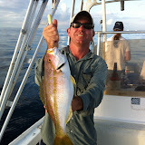Flag Yellowtail.JPG