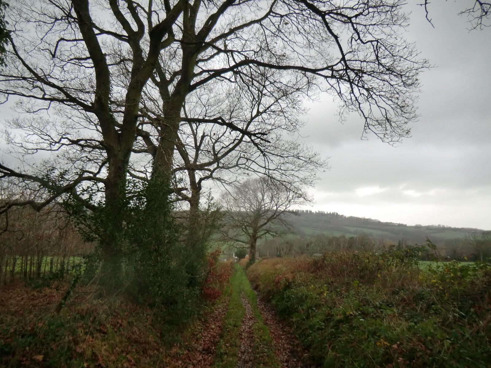 CIMG2010 Track to Jessup's Farm