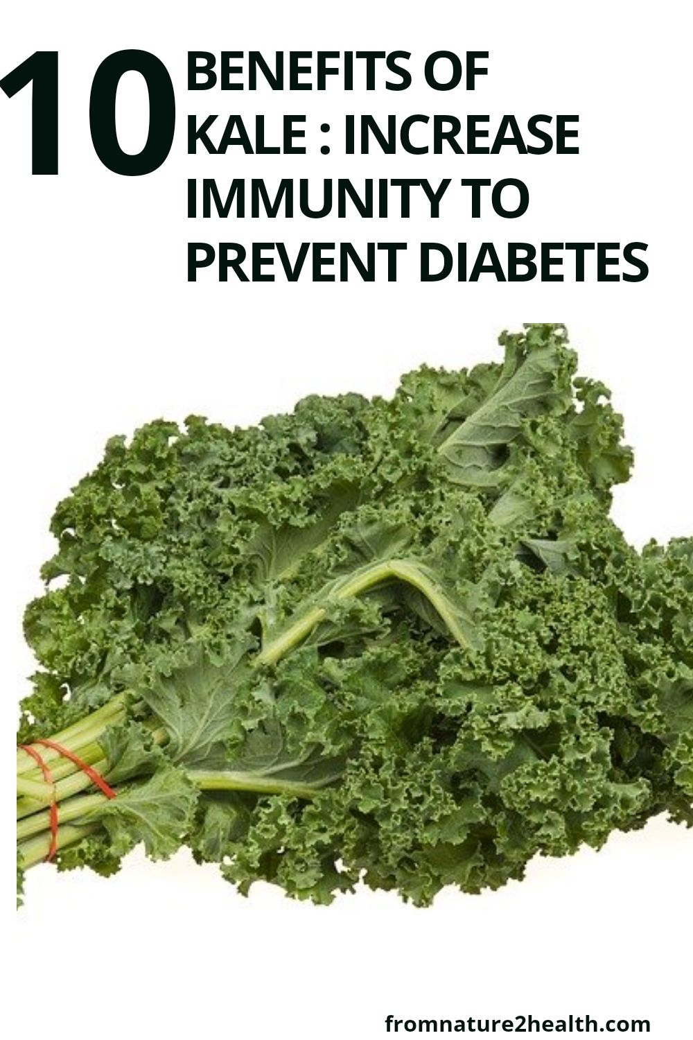 10 Benefits of Kale : Increase Immunity to Prevent Diabetes