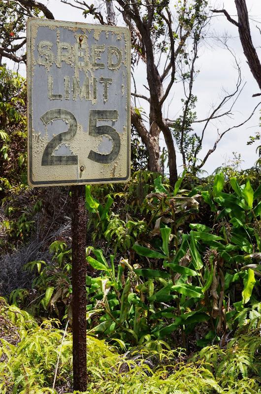 06-20-13 Hawaii Volcanoes National Park - IMGP7816.JPG