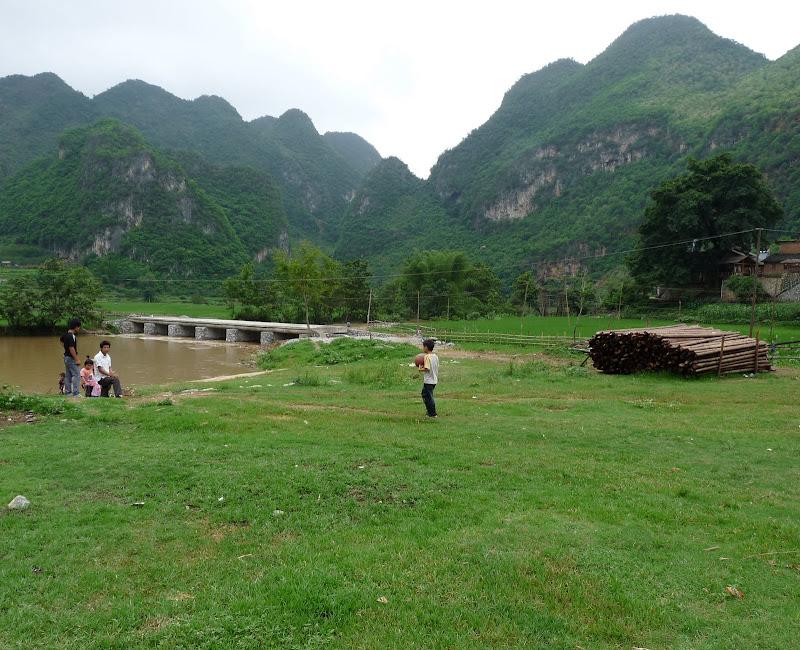Chine . Yunnan BA MEI 2 - P1260926.JPG