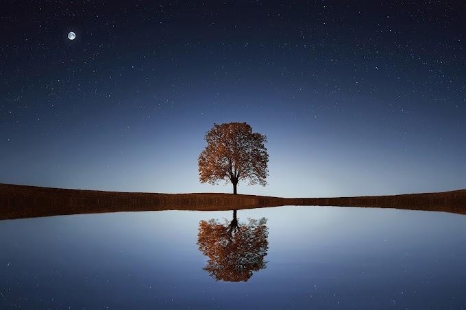 Makinalaşan Dünyanın  Bir İnsanı: Nazım Hikmet Ran