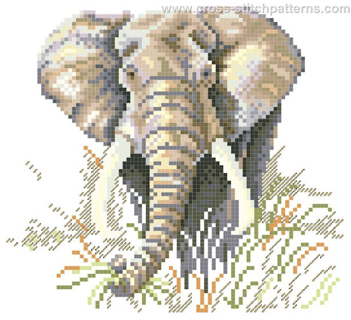 Elephant chart
