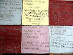 "Scuola Primaria Castel Viscardo primavera2010 ""la terra dei desideri"""
