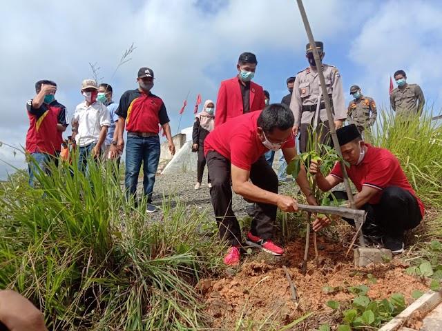 Sambut HUT Ke-48, PDIP Balangan Tanam 1.000 Pohon