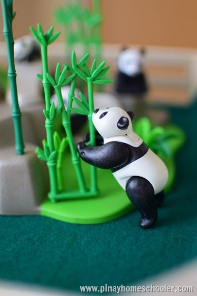 Giant Pandas Playmobil Playset