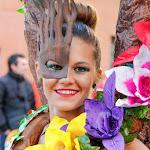 CarnavaldeNavalmoral2015_270.jpg