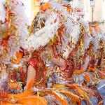 CarnavaldeNavalmoral2015_060.jpg