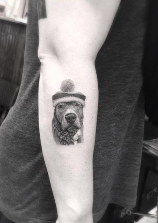 Esta hiper-realismo cão usando um boné