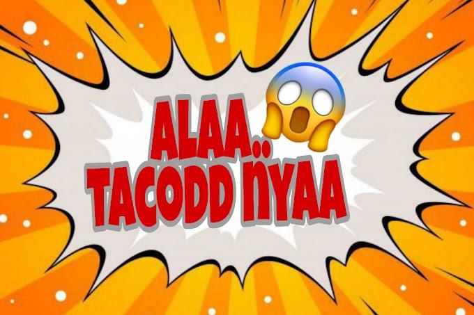 Aaaaa... Tacodd nya..