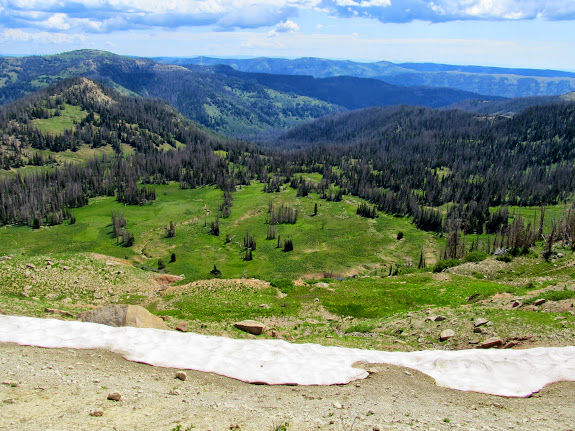 Meadow Fork of Black Canyon