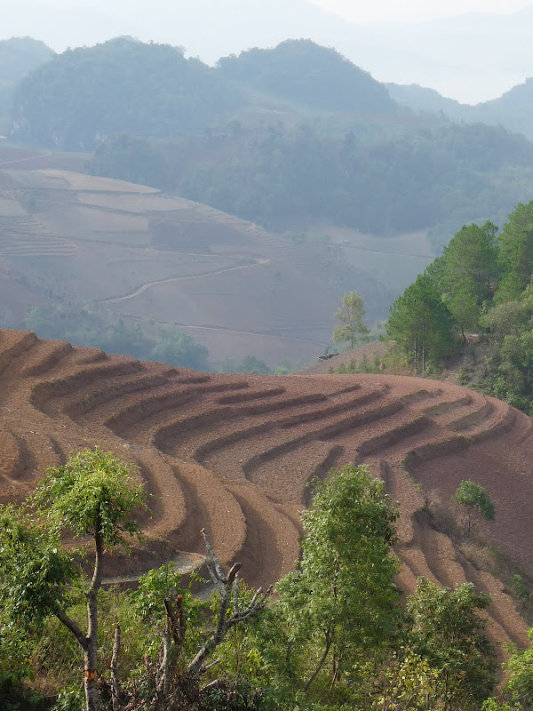 Chine . Yunnan..Galamba, Menglian Album A - Picture%2B423.jpg