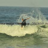 _DSC9341.thumb.jpg