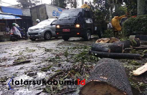 3 Pohon Tumbang di Jalan Sudirman Sukabumi Timpa Mobil Angkot