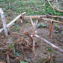 Vodov izlet, Ilirska Bistrica 2005 - Picture%2B265.jpg