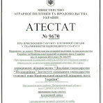 Атестат-9670.jpg