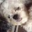 Trishia Macabalo's profile photo