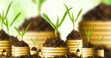 como-investir-meu-dinheiro-investimentos-online