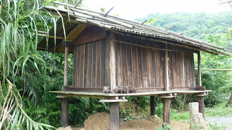 TAIWAN A cote de Luoding, Yilan county - P1130564.JPG