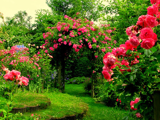 Most Beautiful Gardens In The World Arch Flowers Garden Grass Pink
