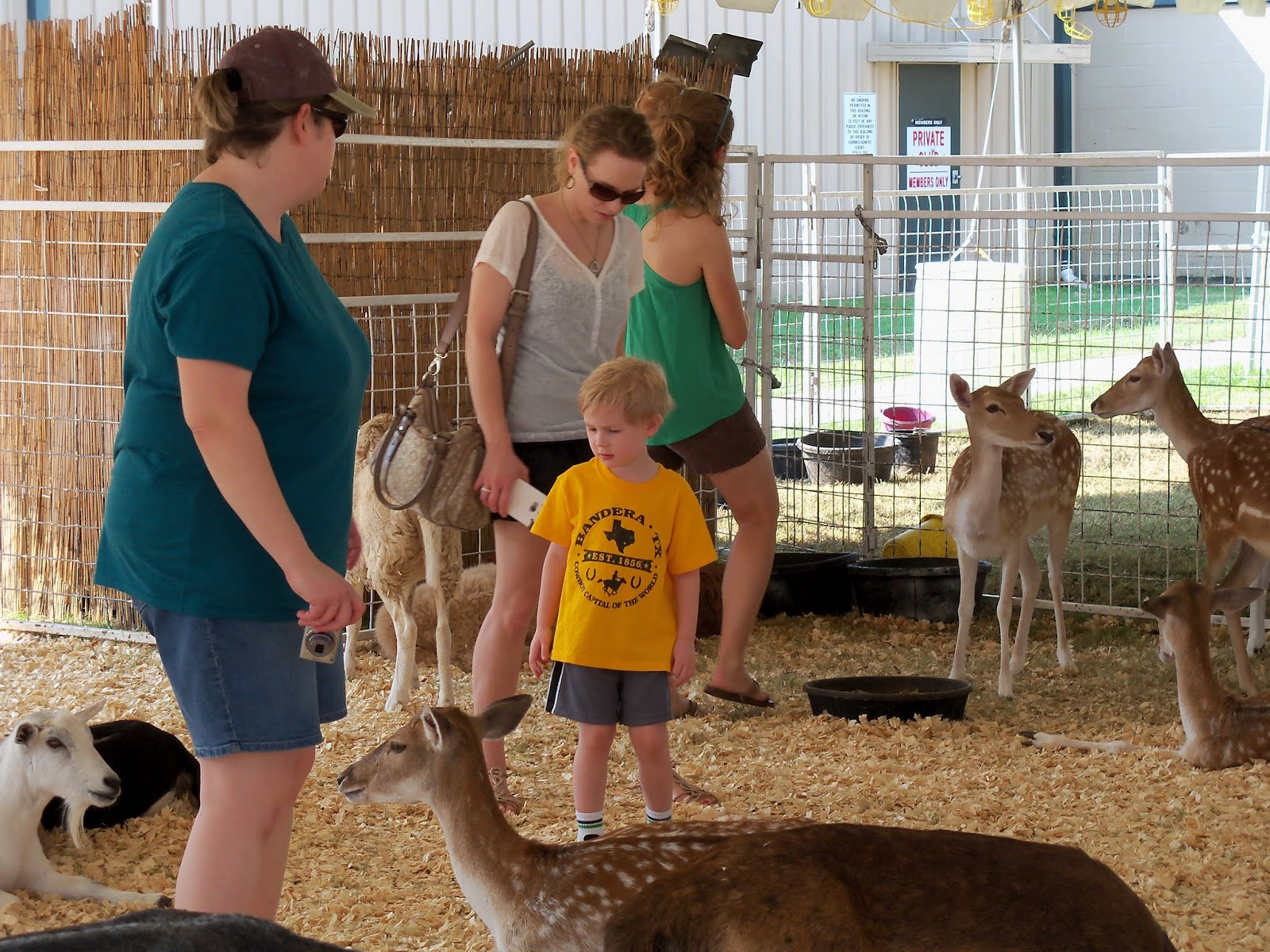 Fort Bend County Fair 2015 - 100_0184.JPG