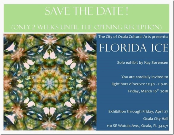 Florida ice Save the Date