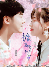 Protector in the City China Web Drama